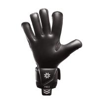 Вратарские перчатки Bravry Catalyst Black Lion
