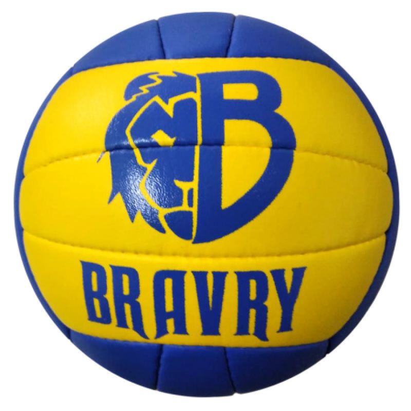 Мяч волейбольный профессиональный BRAVRY SAMBA