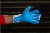 Вратарские перчатки Bravry СATALYST I.L. 72 (LITOVA)
